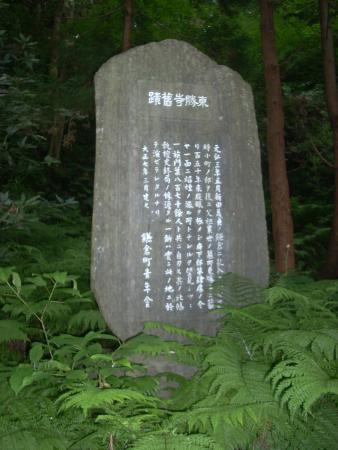 Toshoji Temple Ruins