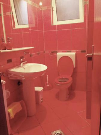 Apartmani Cetkovic: Our crazy red bathroom
