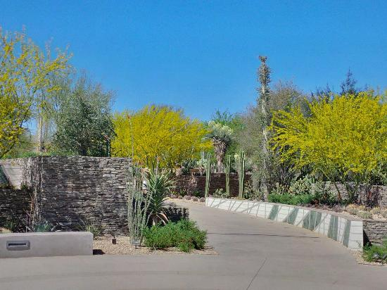 Great Pathways And Interesting Plants Watch For Roadrunners Picture Of Desert Botanical
