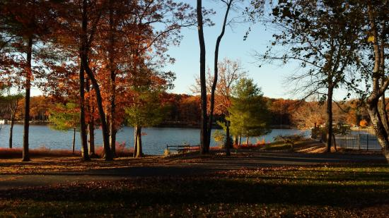Woodloch Pines Resort: Fall view of Lake from our room.