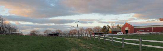 Coopersburg, PA: view from the fields back up to the barns