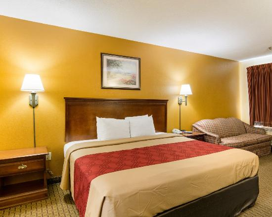 Econo Lodge: King Bed