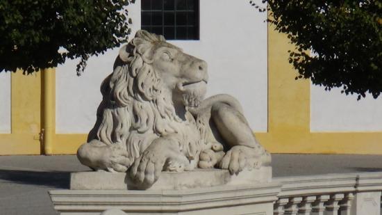 Schloss Hof: lion
