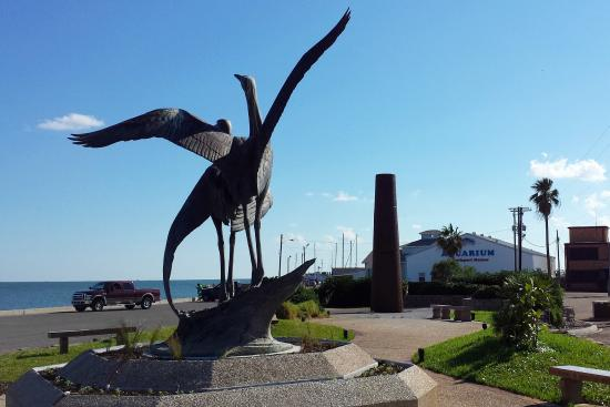 Rockport, TX: Viewing the Aquarium building from the sculpture garden