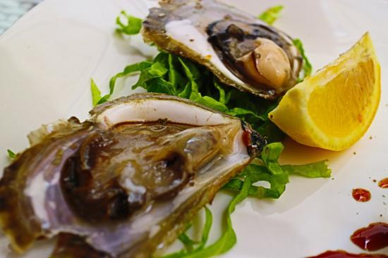 Oyster & Sushi Bar Bota : oyster
