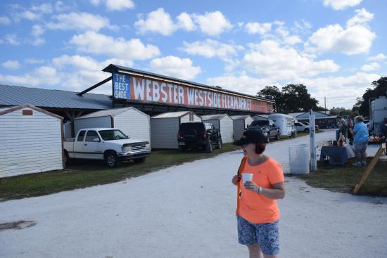 Webster, فلوريدا: The Main Market