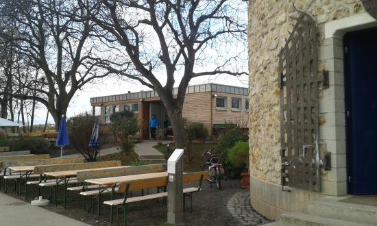 Floersheimer Warte: Turm und Gartenlokal unter den Walnussbäumen