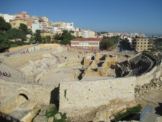 coliseum - Bild von Museu Nacional Arqueologic de Tarragona, Tarragona - Trip...