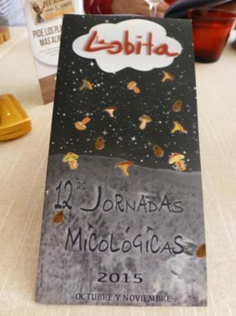 Navaleno, İspanya: Jornadas micológicas 2015