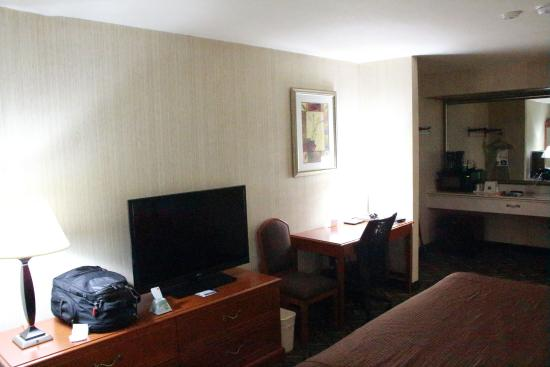 Best Western Airport Plaza Inn: room