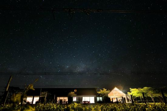 Takatu Lodge & Vineyard: Night sky from the vineyard