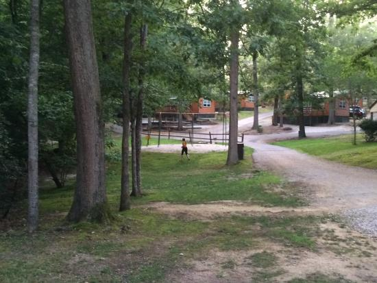 Williamsburg KOA Campground: View of road inside campground from our cabin