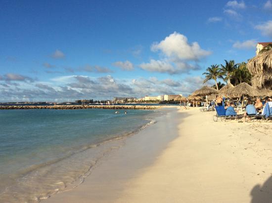 Beach picture of divi aruba phoenix beach resort palm for Aruba divi phoenix