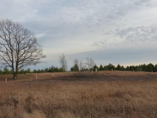 Stillwater, estado de Nueva York: Battlefield vista