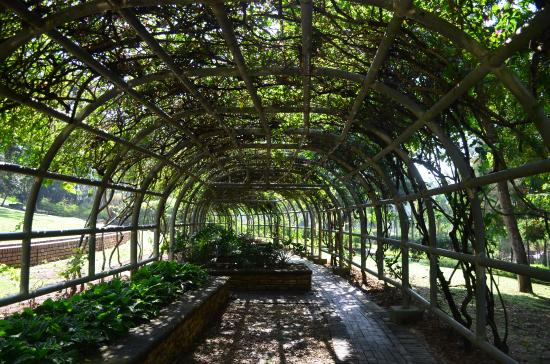 Flower Tunnel Picture Of Putrajaya Botanical Garden Putrajaya Tripadvisor
