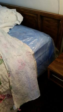 Sheffler's Motel : OMG - Who leaves the plastic wrapping on mattresses?