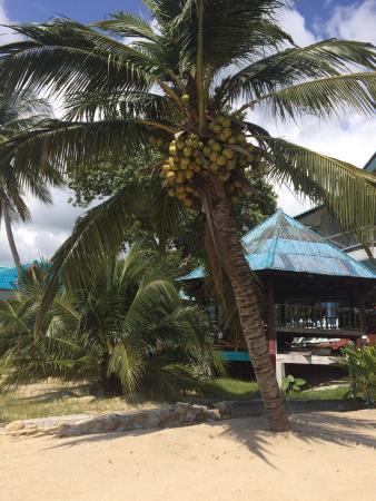 Sun Sea Resort: photo4.jpg