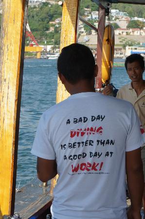 Turtle Dive : Câu nói thú vị trên áo của thợ lặn