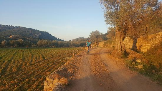 Fornalutx, España: 20151114_170418_large.jpg