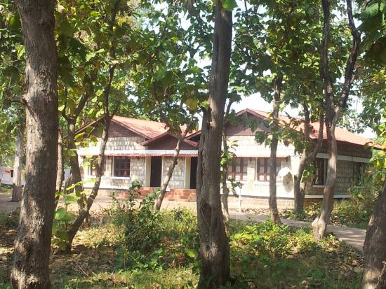 Dormitory - Picture of MTDC Holiday Resort Tadoba
