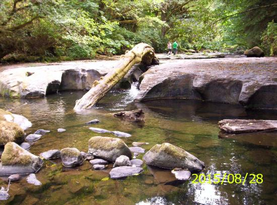 Mapleton, OR: Downstream carved river bed (in August)