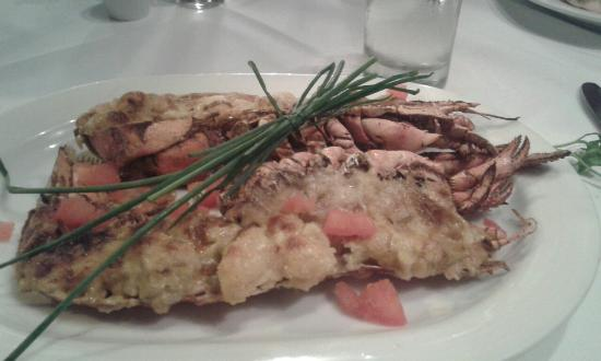 The Square Cafe & Restaurant: Lobster Thermidor
