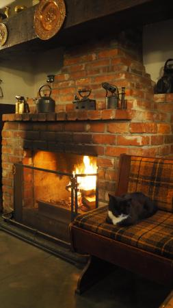 Cork & Keg: The fireplace and the cat (who was happy to jump on your lap, if you petted it)