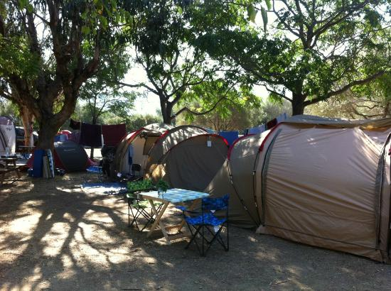 Camping Les Oliviers : Emplacement de camping