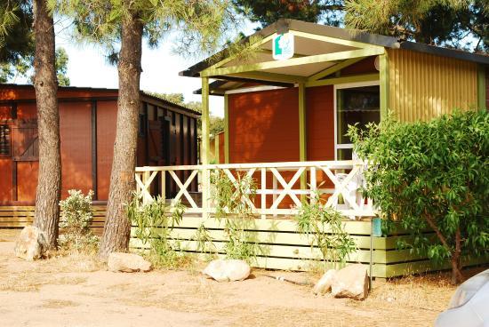 Camping Les Oliviers : Bungalow Morea 5 places climatisé