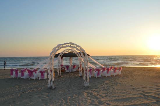 Matrimonio Spiaggia Maccarese : Catering picture of eco del mare maccarese tripadvisor