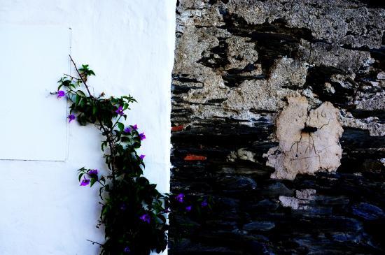 Portlligat, إسبانيا: PORTLLIGAT