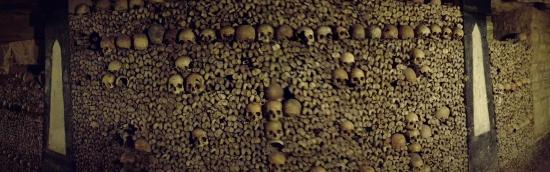 Aeon Tours: Bone sculpture