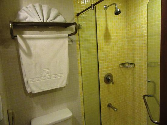 Pearl Lane Hotel: シャワーブース、ハンシャワーはない