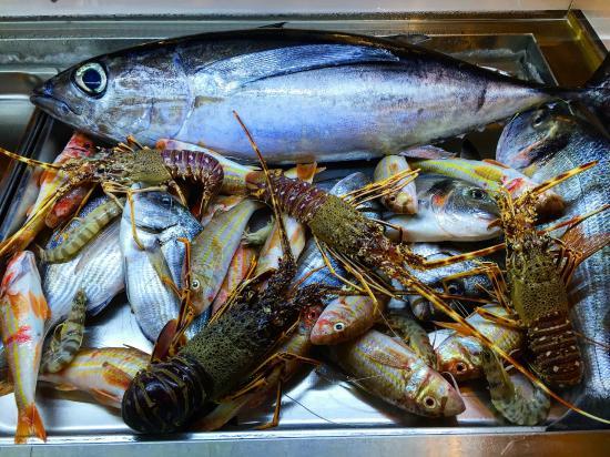 Locanda Colibri: Pesce in Bella Vista