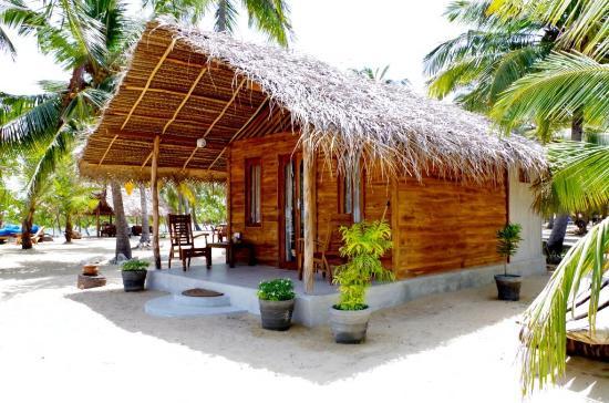 Whale Watching Mirissa Beach Cabanas And Luxury Acomadations
