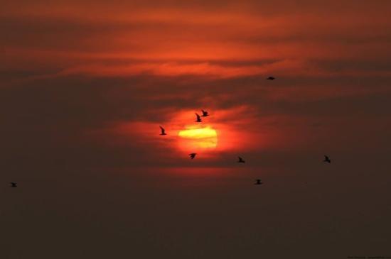 Ganpatipule, Ινδία: amazing settings for a perfect sunset