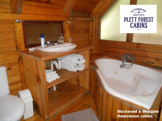 honeymoon cabins luxury rainforest ideas cabin elegant cruises