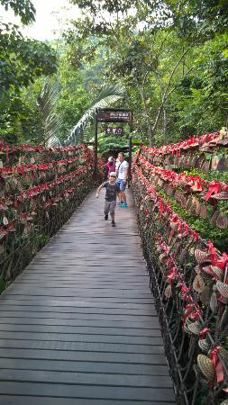 Yanoda Rainforest Yihao Resort: Качающийся мостик