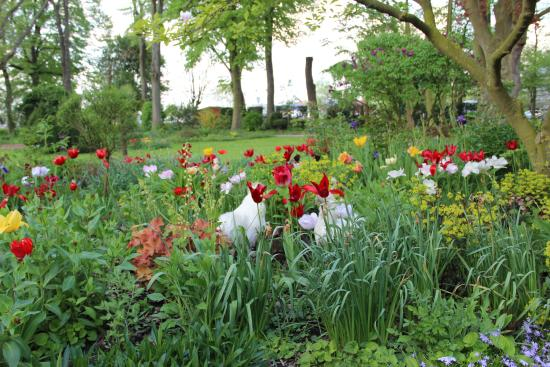 Saint-Venant, Prancis: Le parc fleuri invite à une balade bucolique
