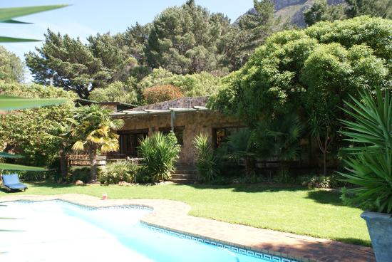 The Tarragon: Pool area and gardens