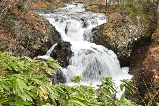 Sangaitaki Park