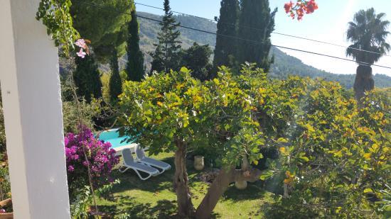 Casas Rurales La Molineta: El Huerto Garden and Pool