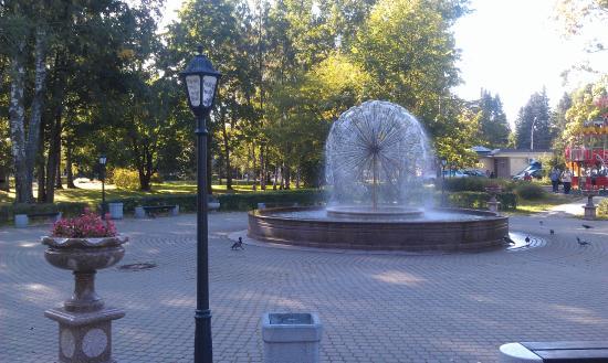 Zelenogorsk, Ρωσία: Фонтан Одуванчик