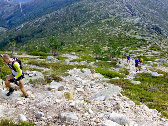 Madrid Outdoor Sports: Trail running in one the world's most unique National Parks: Sierra de Guadarrama.