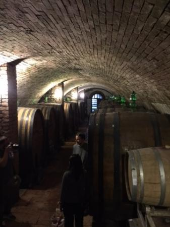 Day Tour in Italy: Chianti Winery in Tuscany