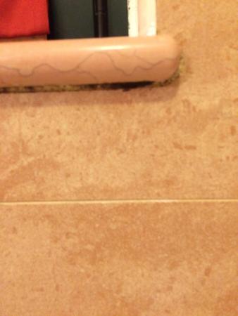 Hotel Villa delle Rose Malpensa: Mould in the bathroom