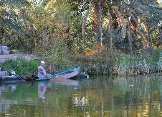 Basrah, อิรัก: احد بساتين ابي الخصيب
