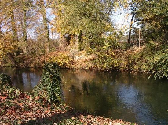 Chateauneuf-de-Gadagne, ฝรั่งเศส: River Sorgue in the grounds