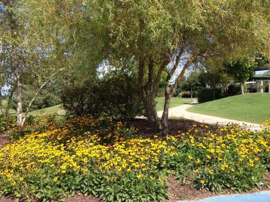 Koasati Pines at the Coushatta Casino Resort 사진
