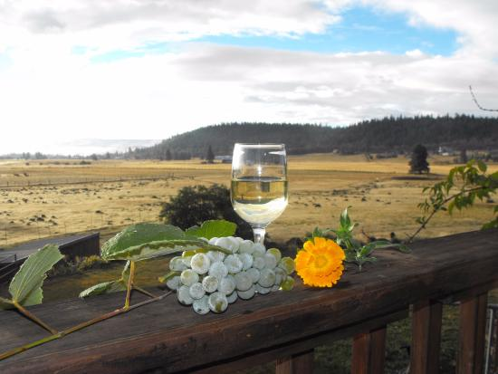Hood River, Oregón: Wine on the deck